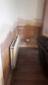 Plastered DPC in lounge